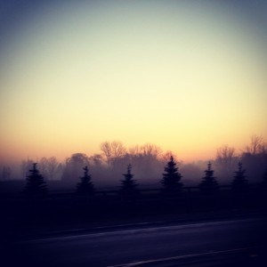 photo-300x300